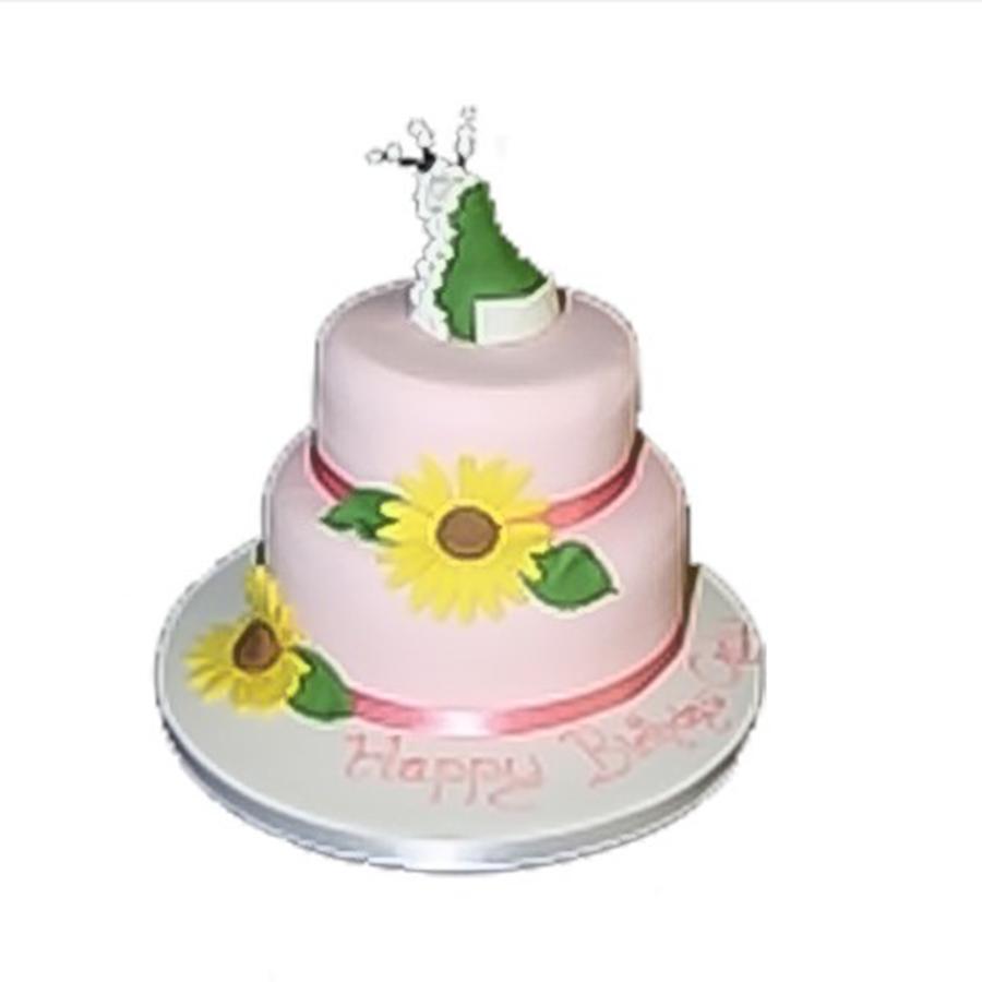2 Tier Novelty Cake