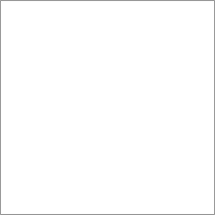 Renshaw White Covering Paste 2.5kg - Single